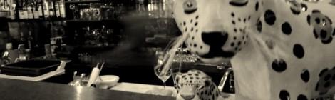 Bar da Dona Onça - Debaixo das curvas do Copan